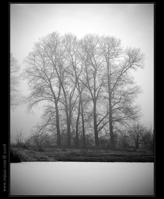 černobílé fotky 14