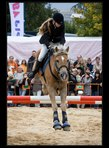 fotky koní 12