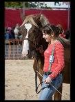 kůň 32