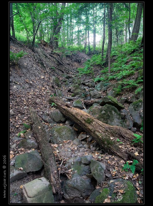 stromy 02