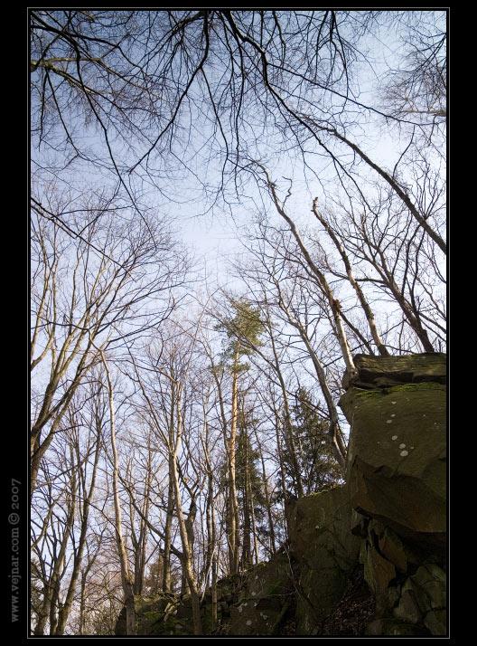 stromy 04