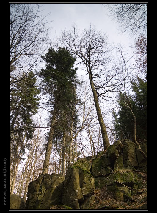 stromy 05