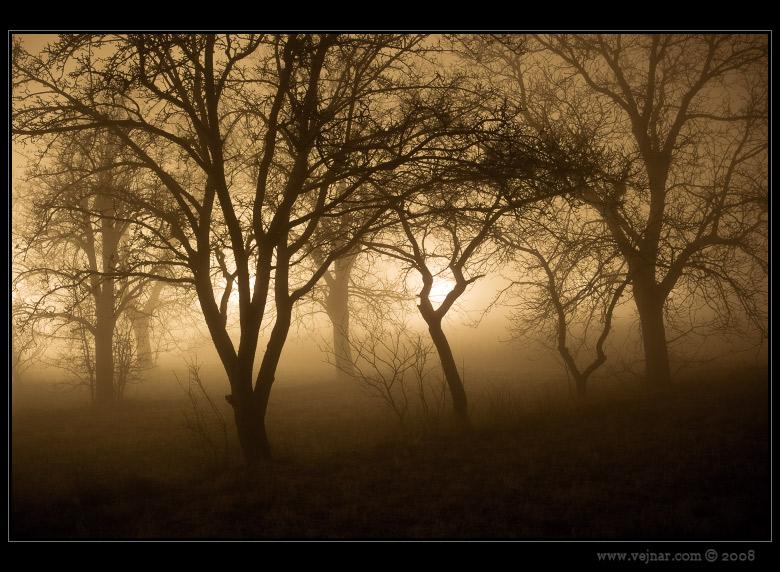 noční fotografie 01