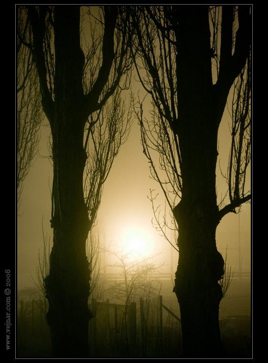 noční obrázky 05
