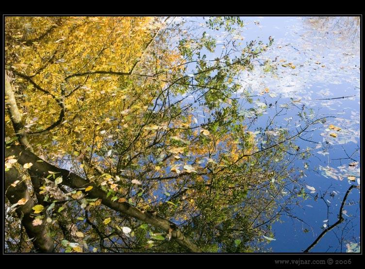 obrázky podzimu