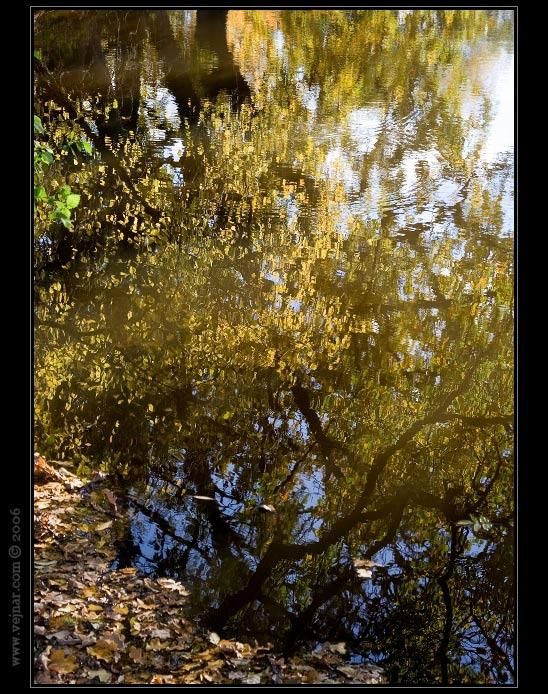 fotogalerie podzimu