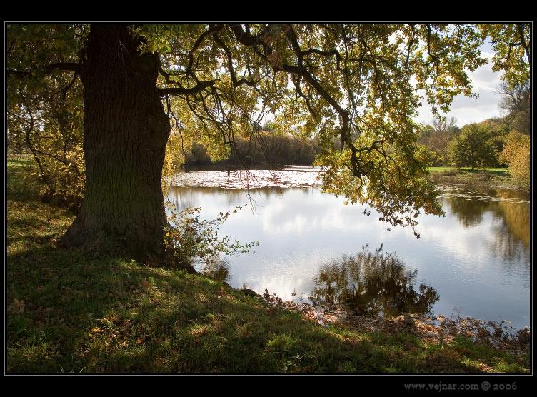 podzimní fotografie