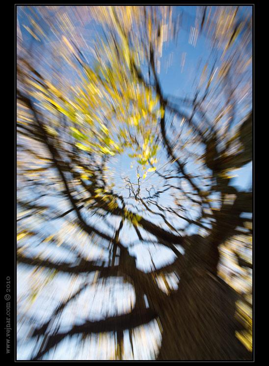 Podzimní ráno 07