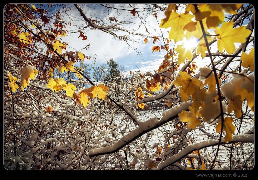 Mrazivý podzim
