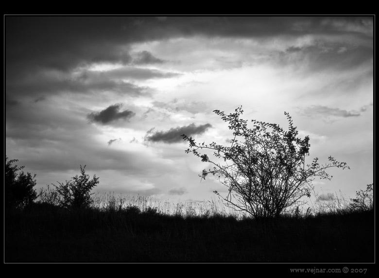 čb příroda 03