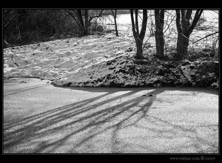 zimní příroda 01