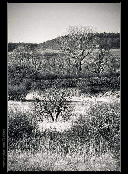 černobílá příroda 03