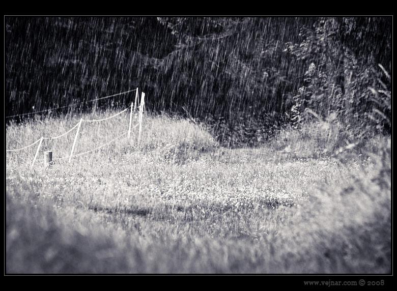 déšť foto