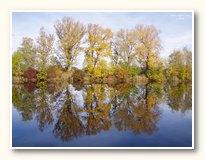 podzimní tapety na plochu