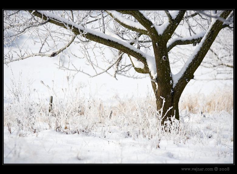 zimní obrázky 02