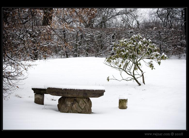 zimní příroda 03