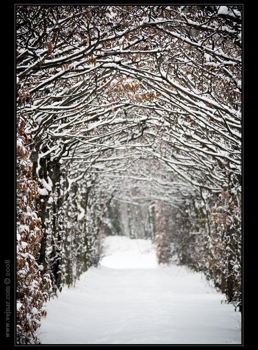 zimní obrázky 06